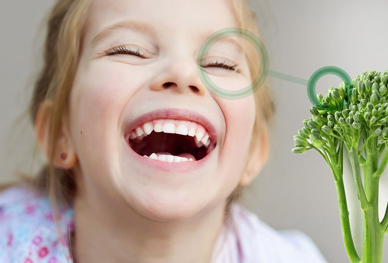 Tomar brócoli potencia la buena visión
