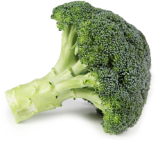 VItaminas del Brocoli - Mr.Broko