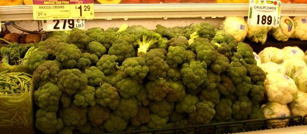 caracteristicas del brocoli