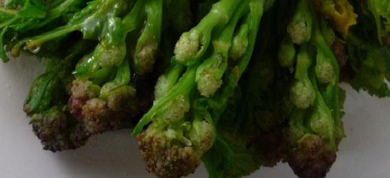 como-cocer-brocoli