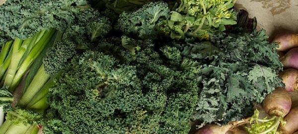 hojas-de-brocoli