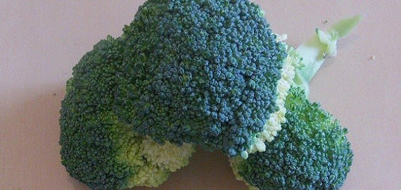 salsa-de-brocoli